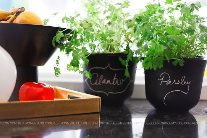 DIY Potted Herb Makeover