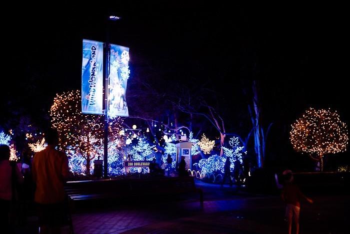 Christmas 2013 FMB-19