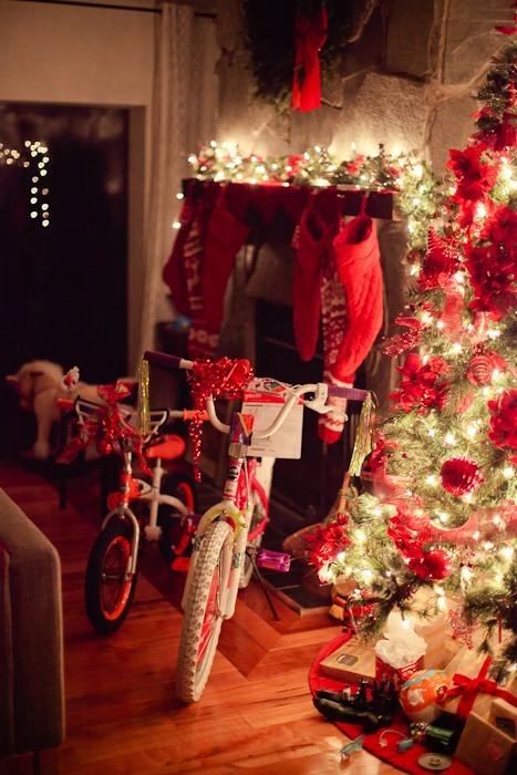 Christmas 2013 FMB-9