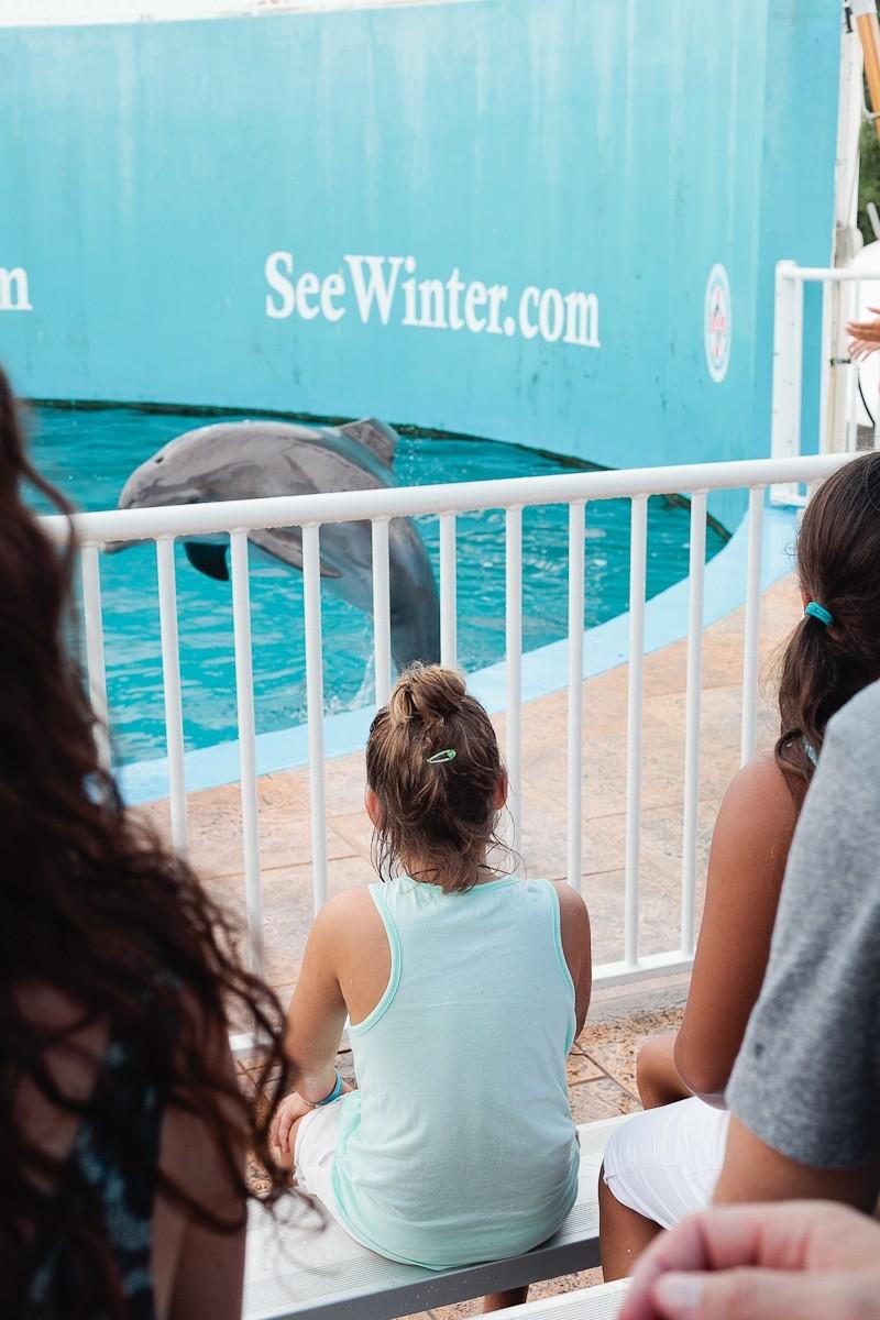 Dolphin Tale 2 Weekend-13