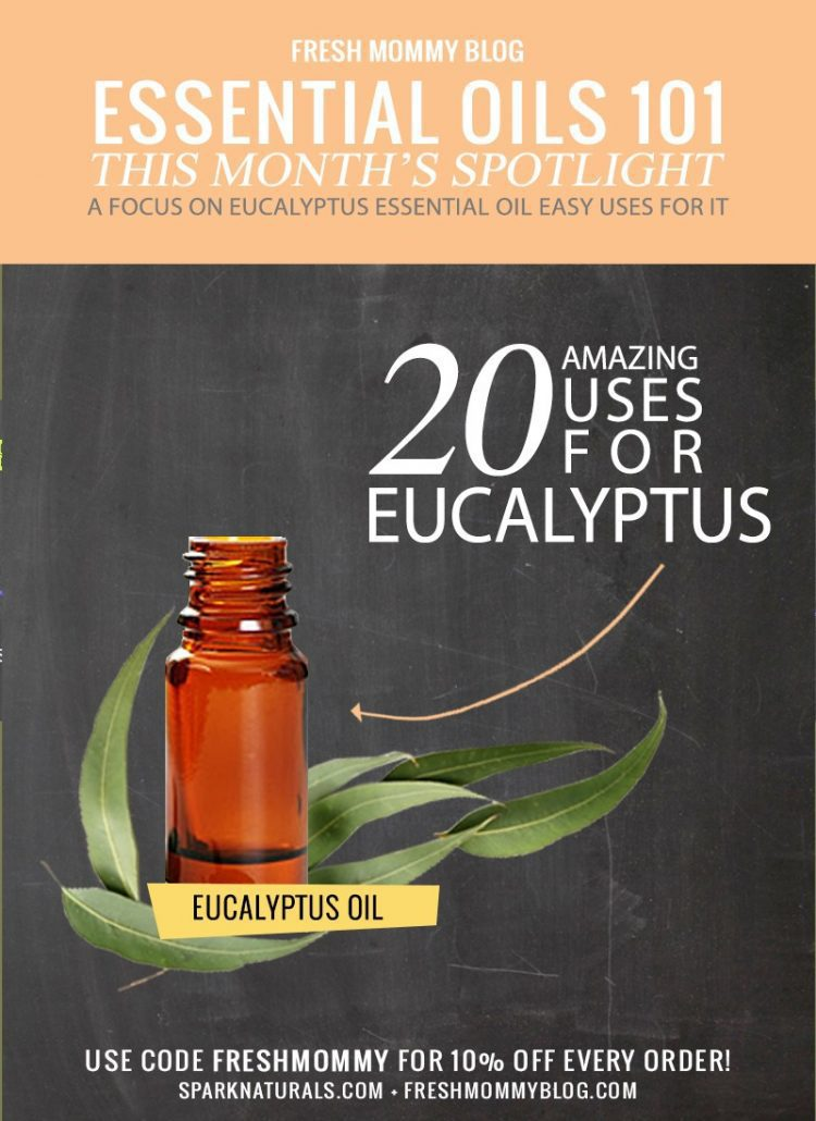 Oil Spotlight // 20 Simple and Amazing Eucalyptus Oil Use