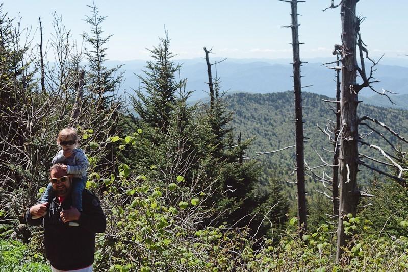 Smoky Mountains The Appalachian Trail