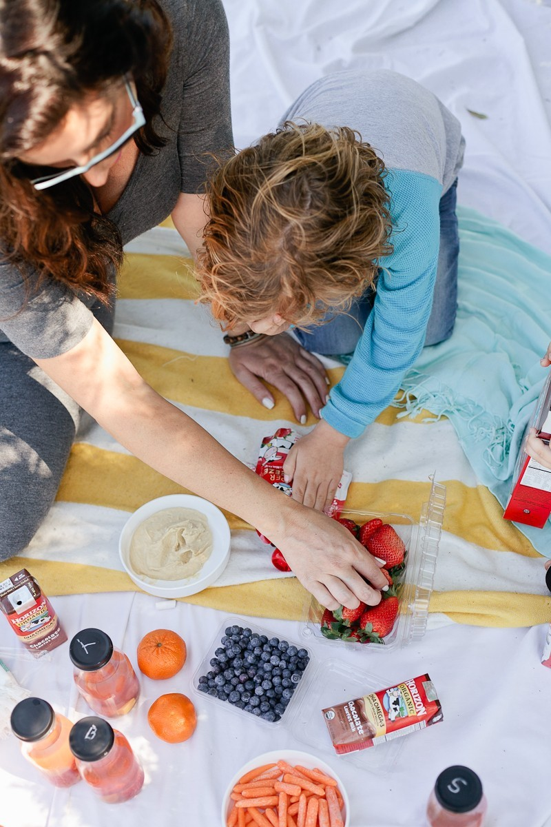 How To Plan a Picnic - A Kid Friendly Survival Guide