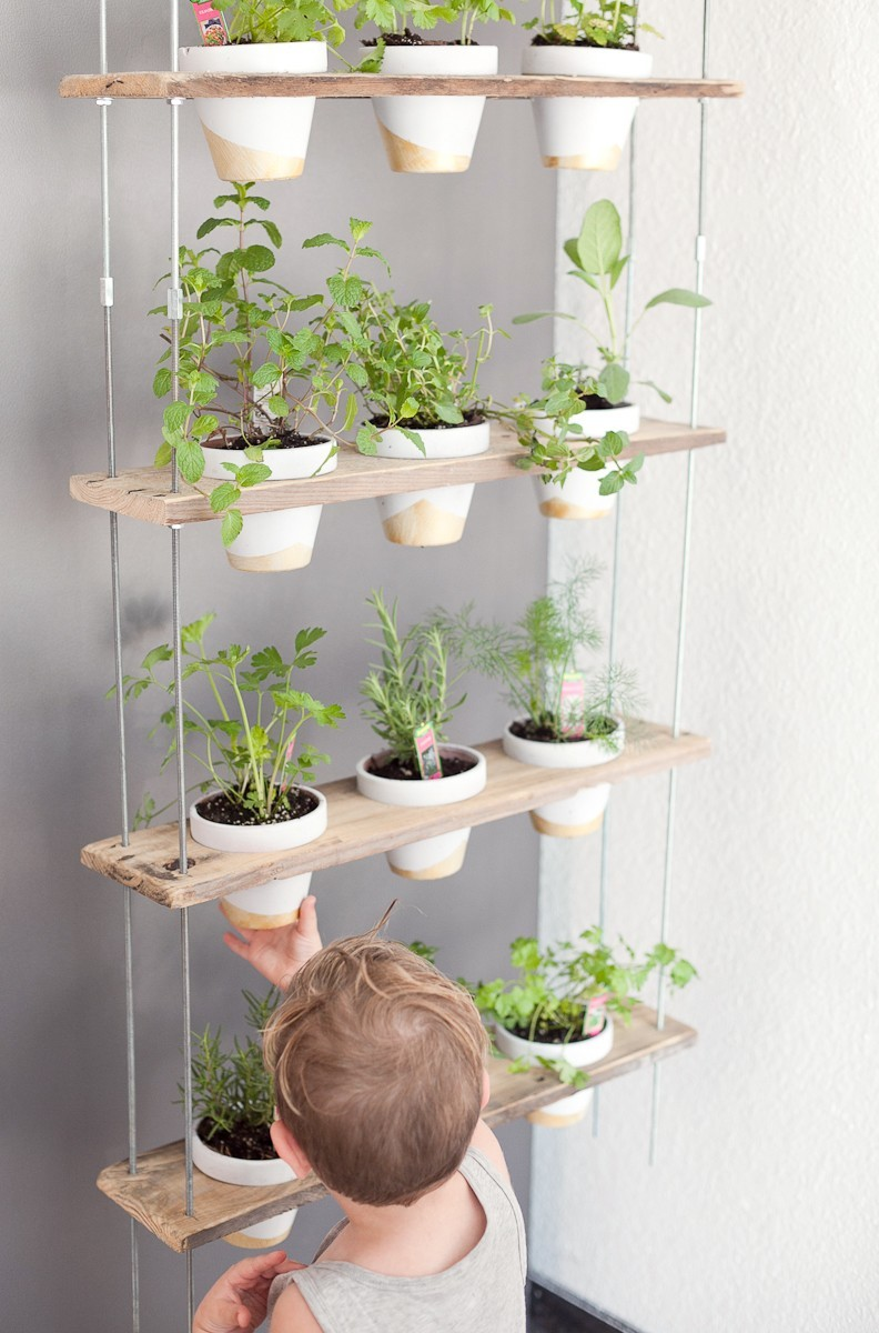 Custom potted hanging herb garden diy fresh mommy blog for Kitchen garden decoration