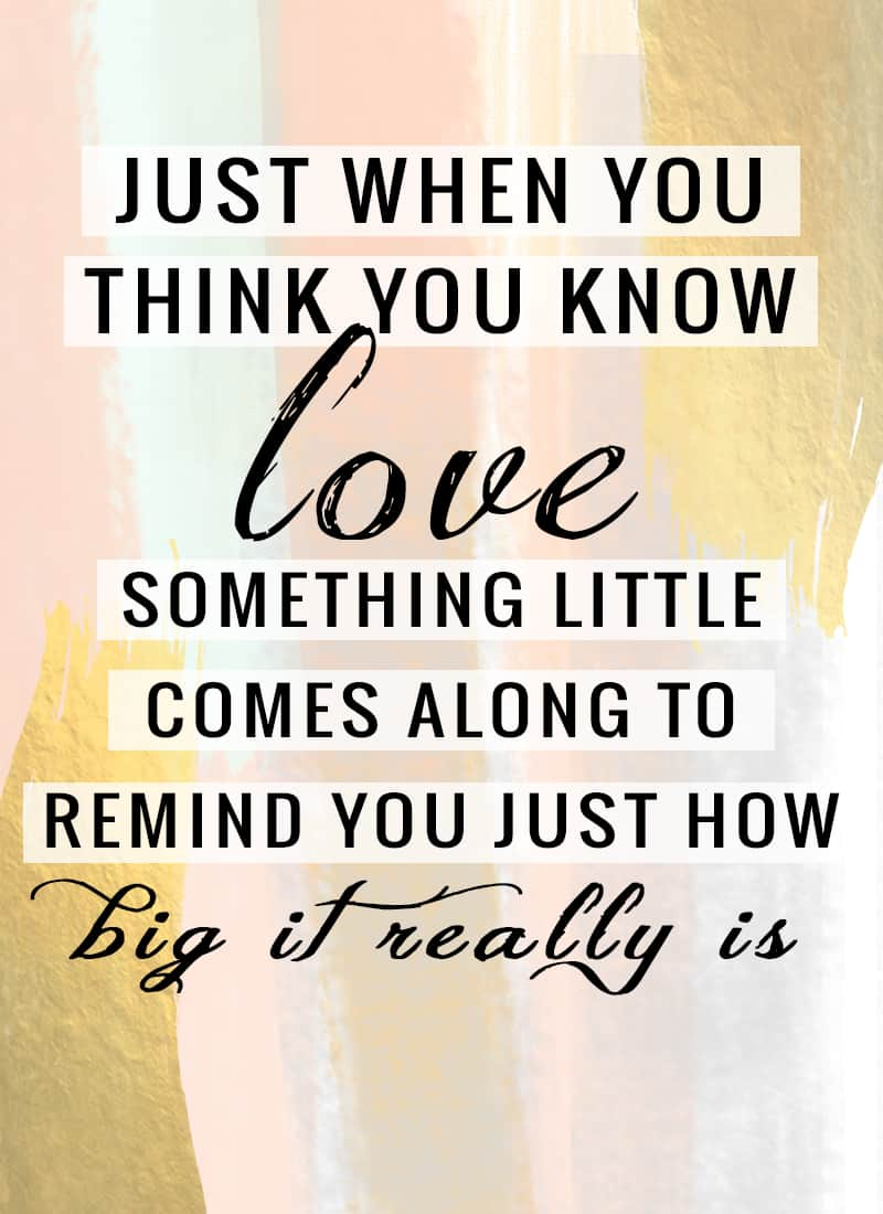 """Just when you think you know love, something little comes along to remind you just how big it really is."""