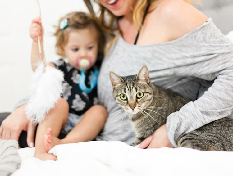 5 Tips for the Best Kid + Pet Photos and a Simple Cat Toy DIY