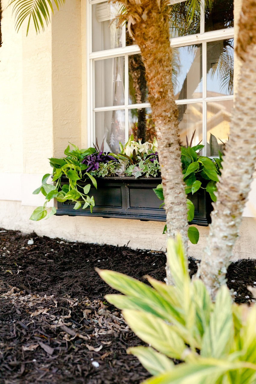 5 Tips to Create the Perfect DIY Window Box featured by popular Florida lifestyle blogger, Fresh Mommy Blog
