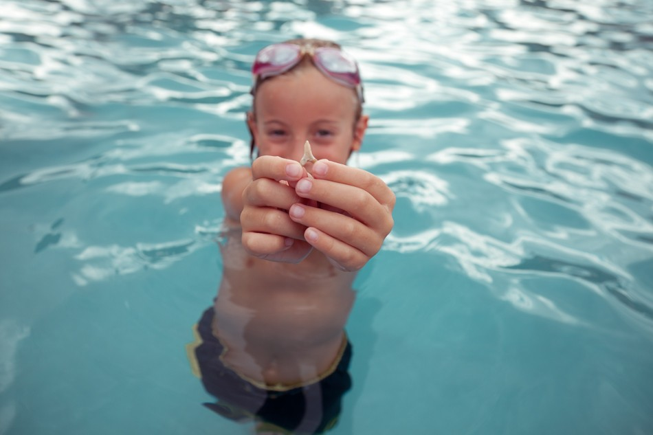 Integrate Shark Week Inspiration Into Your Summer