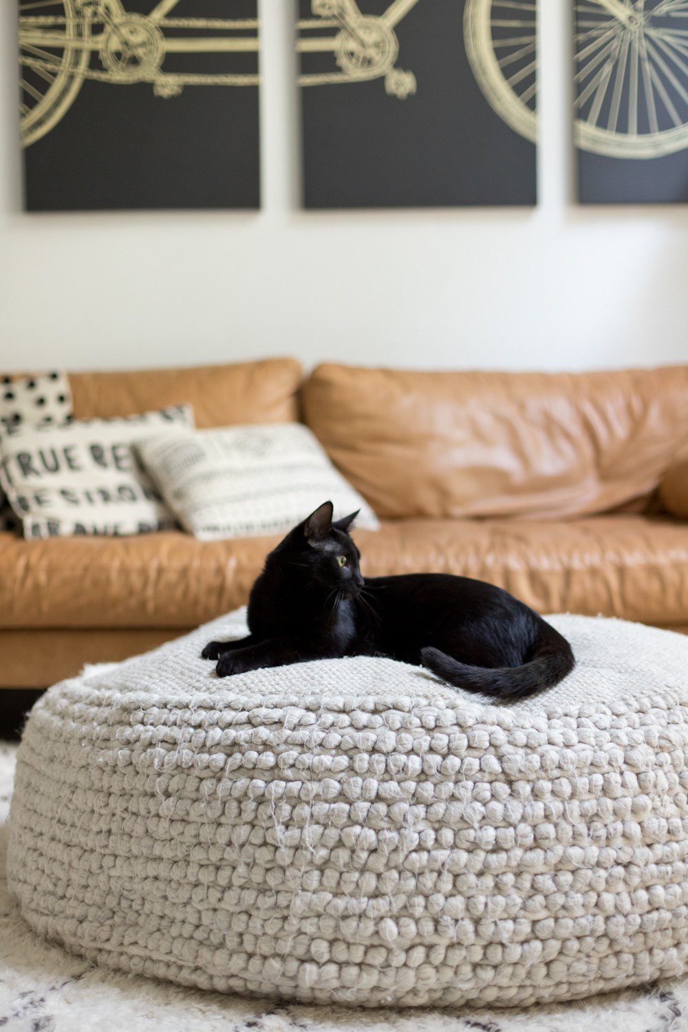 5 Essential Things for the Best Kitten Care from top US lifestyle blogger Tabitha Blue of Fresh Mommy Blog! I hate cat litter! Here's why the Litter Robot is amazing and our new kitten care best friend.   How to Train Your Cat to Use the Litter Box by popular Tampa life and style blog, Fresh Mommy: image of a black cat sitting on a ottoman.