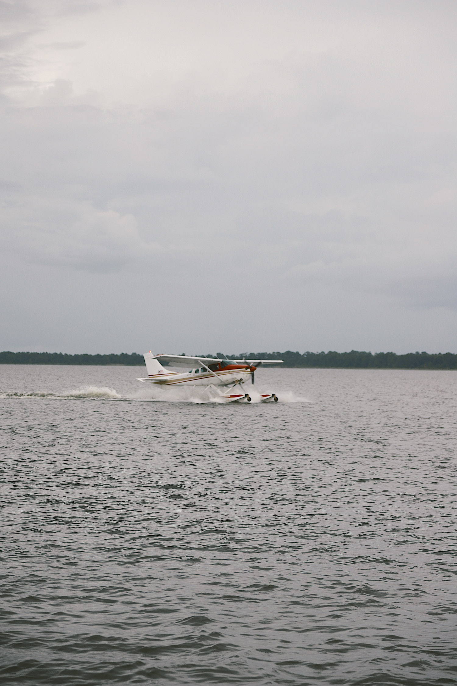 Spectacular Lake County, Florida Staycation Ideas for the Family! | Lake County by popular Florida blog, Fresh Mommy Blog: image of a sea plane landing on the water.