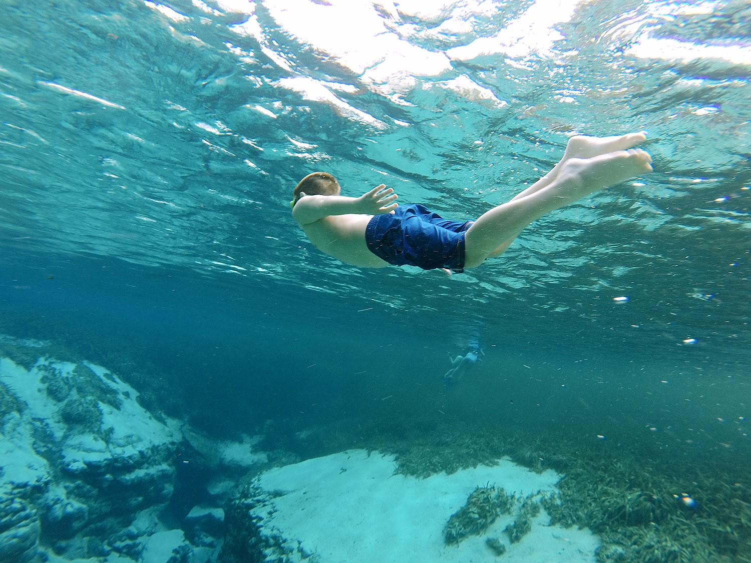 Spectacular Lake County, Florida Staycation Ideas for the Family! Underwater caverns at Alexander Springs Recreation Area in Florida | Lake County by popular Florida blog, Fresh Mommy Blog: image of a boy swimming under water at Alexander Springs Recreation Area.