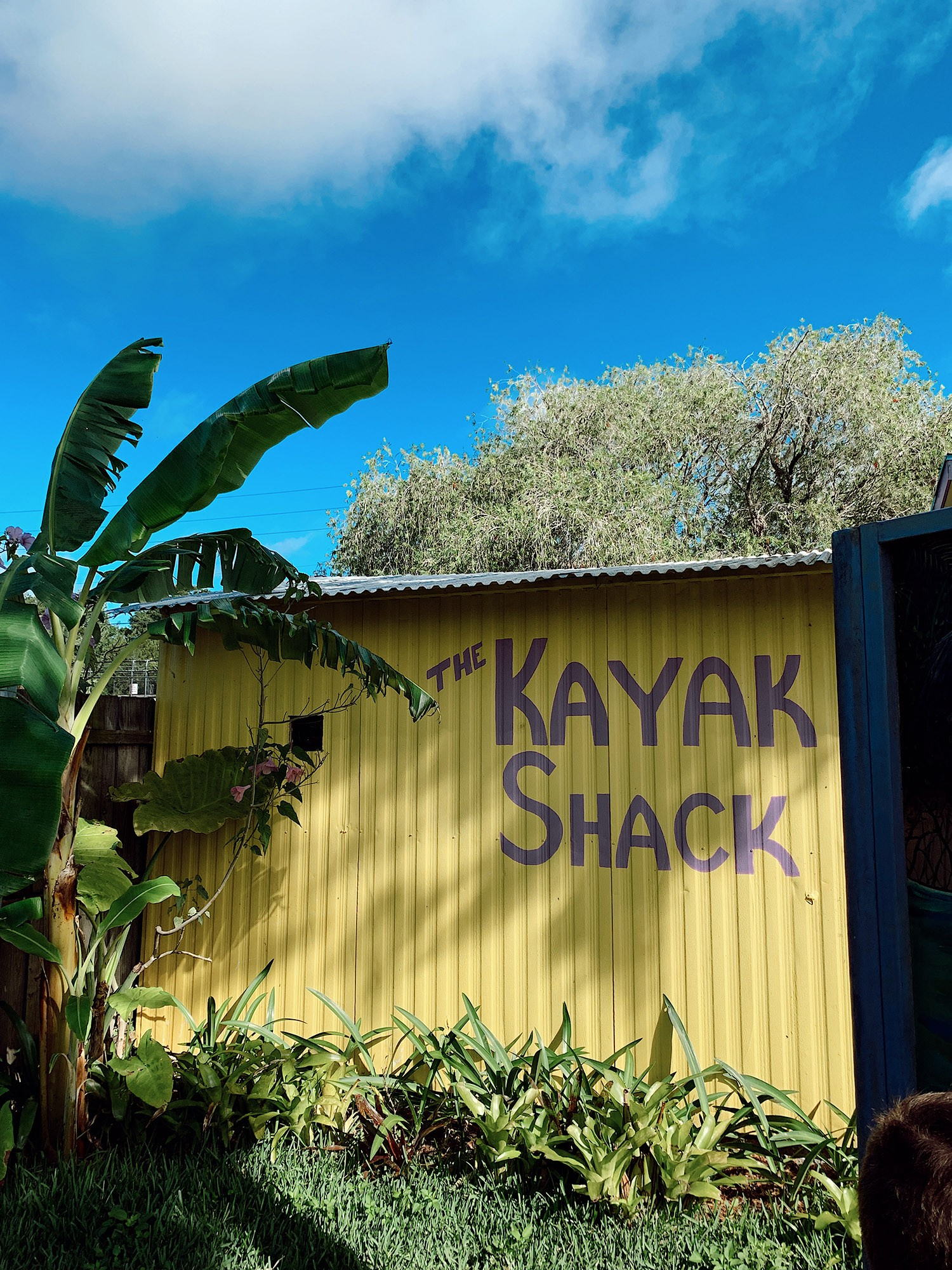 Tips for an Amazing Weeki Wachee Kayaking Florida Staycation. Visit Florida Travel ideas from top lifestyle blogger Tabitha Blue of Fresh Mommy Blog. | Weeki Wachee Kayaking by popular Florida blog, Fresh Mommy Blog: image of The Kayak Shack.