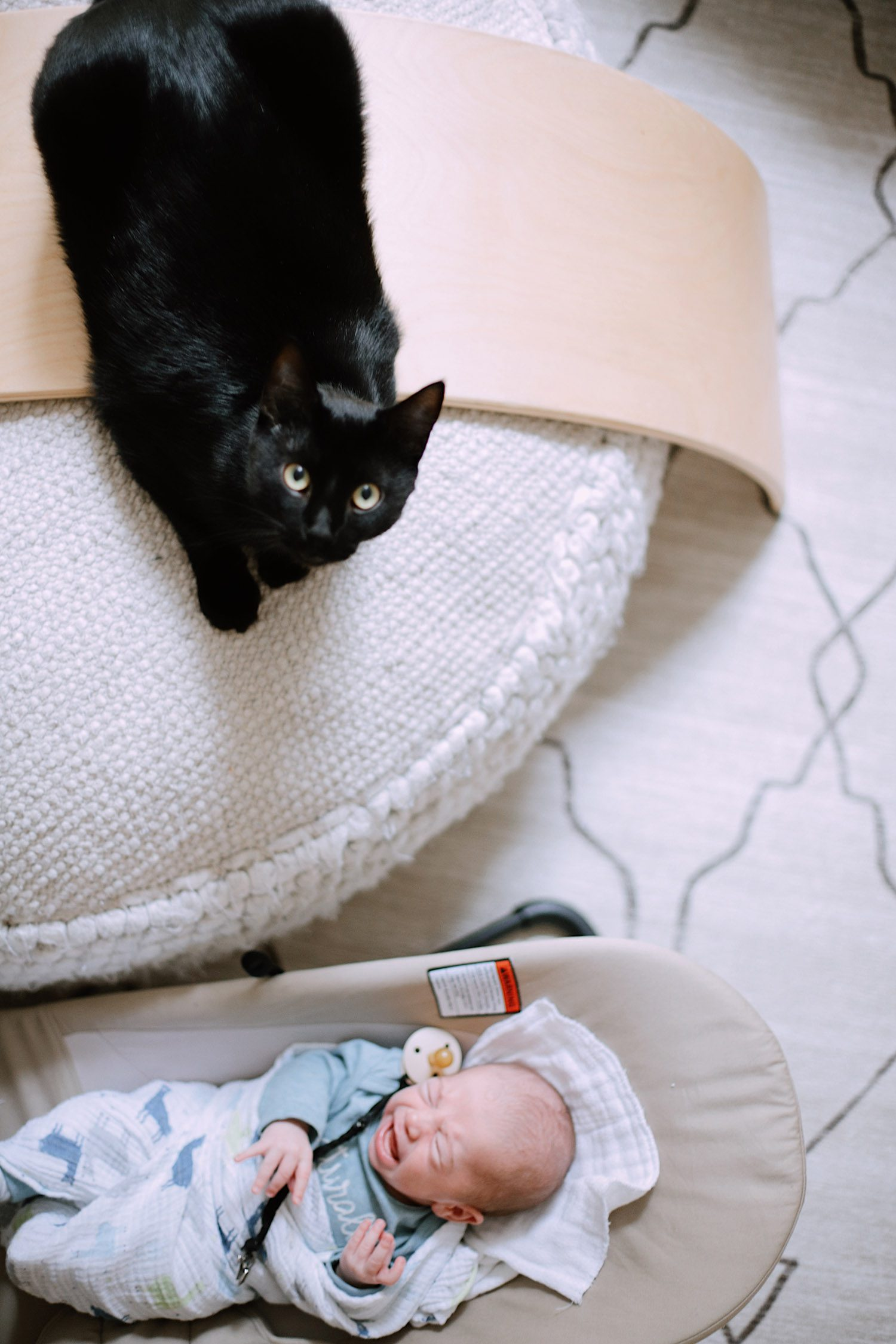 What You Don't Know About Cats and Newborns Living Together | Cats and Newborns by popular Florida motherhood blog, Fresh Mommy Blog:  image of a black cat next to a newborn baby.