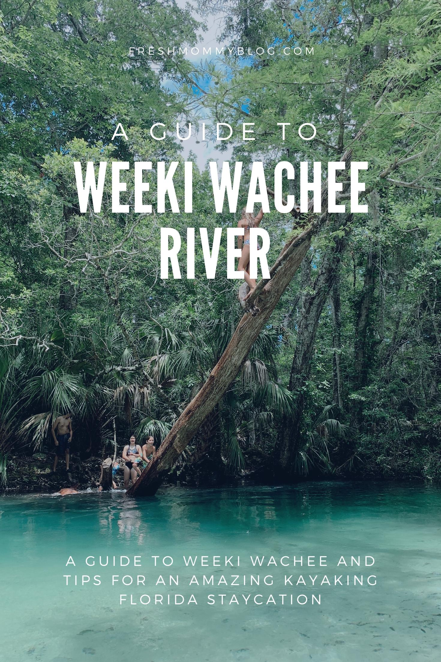 Tips for an Amazing Weeki Wachee Kayaking Florida Staycation. Visit Florida Travel ideas from top lifestyle blogger Tabitha Blue of Fresh Mommy Blog. | Weeki Wachee Kayaking by popular Florida blog, Fresh Mommy Blog: Pinterest image of the Weeki Wachee River.