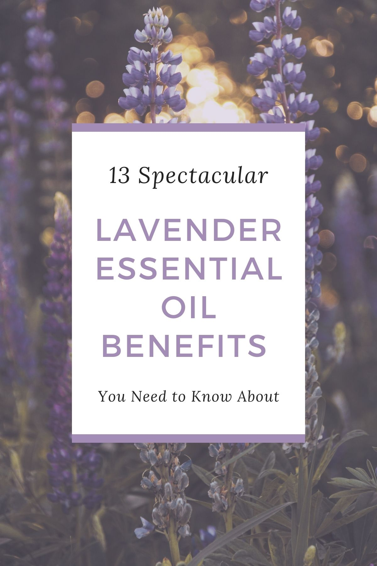 13 Spectacular Lavender Essential Oil Benefits You Need to Know About from Top US Lifestyle Blogger Tabitha Blue of Fresh Mommy Blog. | Lavender Essential Oil by popular Florida lifestyle blog, Fresh Mommy Blog: Pinterest image of Spark Naturals lavender essential oil benefits.